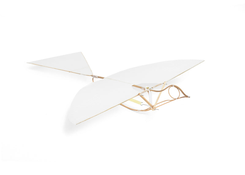 Flying Martha Ornithopter