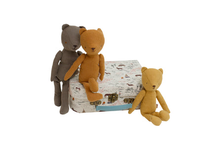 Teddy Family in Western Print Suitcase