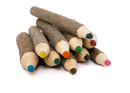 Handcrafted Branch Crayons