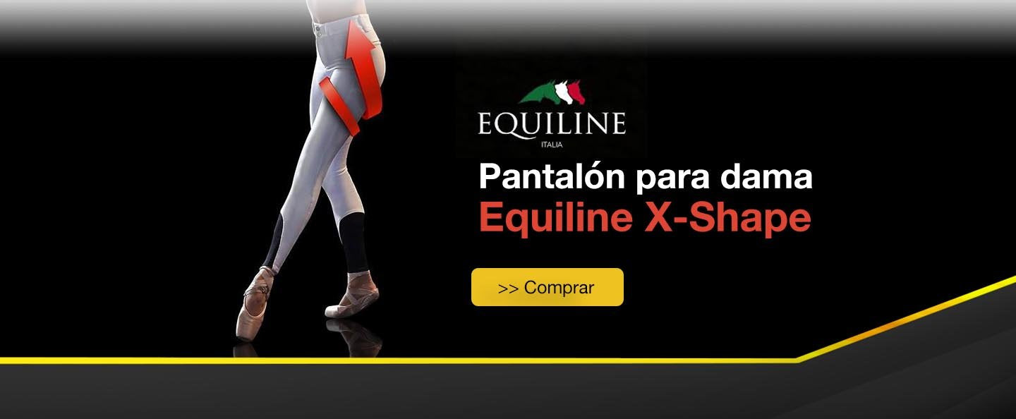 Equiline X Shape