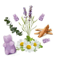 Happy Wax 2 oz Teddy Bear Seasonal Scented Wax Melts - Lavender Chamomile - Piglet's Closet
