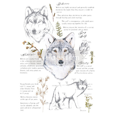 Gray Wolf -Redesign with Prima Furniture Decor Transfer 24
