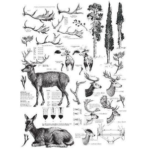 "Re-design Prima Deer Furniture Decor Transfer 23"" x 33"" - Piglet's Closet"