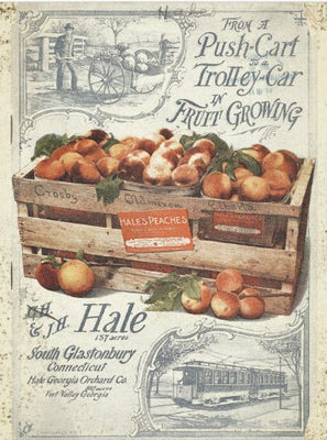 Vintage Farmhouse Push Cart Peaches Decoupage Tissue Paper - Piglet's Closet