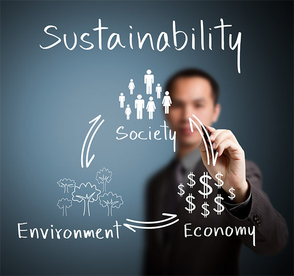 sustainability flow chart