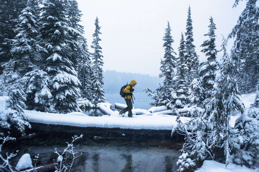 Snowshoeing in Mount Rainier National Park