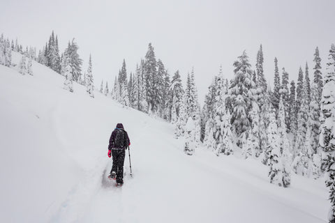 A Tour of the Snowiest Places in America