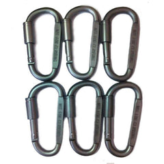 6 Pieces Carabiner Key Chain Outdoor Accessory