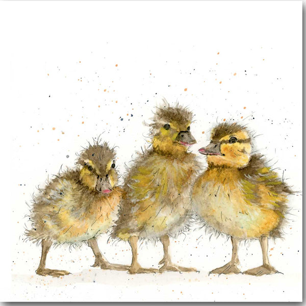 Three Ducklings Greeting Card designed by Sarah Boddy