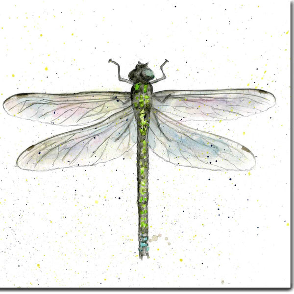 Dragonfly Greeting Card designed by Sarah Boddy