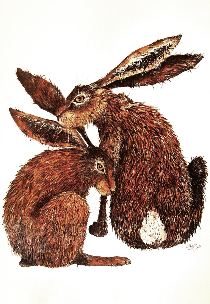 Hare greeting card by Clare Tyas