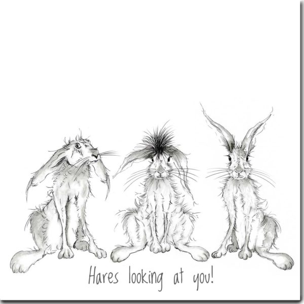 Hares looking at you greeting card