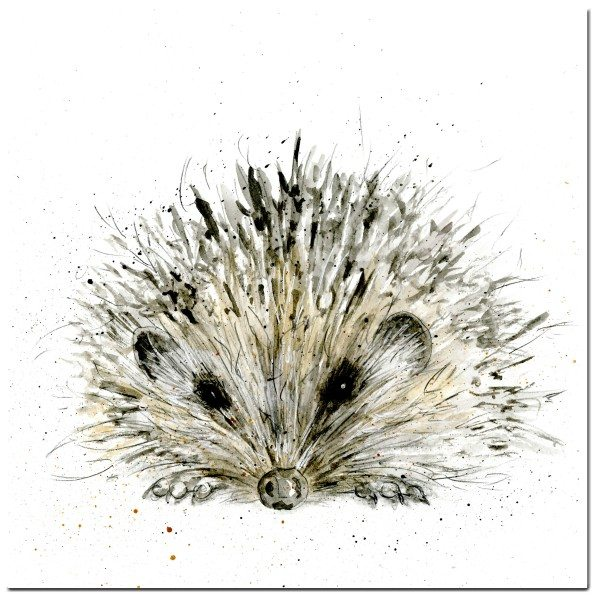 Hedgehog Greeting Card designed by Sarah Boddy