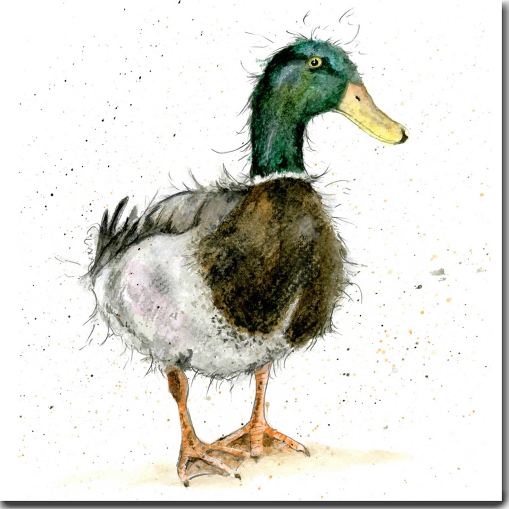 Male Mallard Duck Greeting Card designed by Sarah Boddy