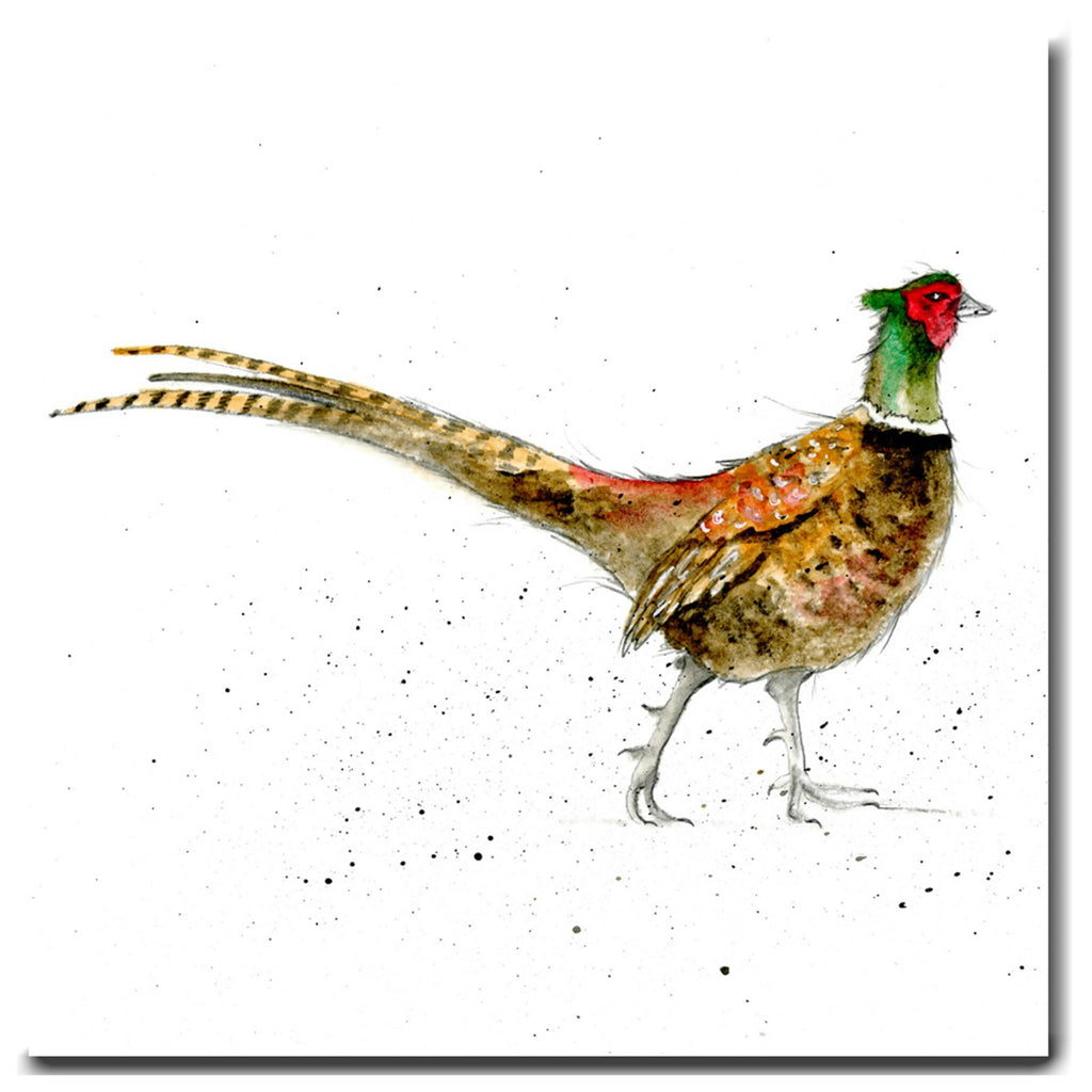 Pheasant Greeting Card designed by Sarah Boddy