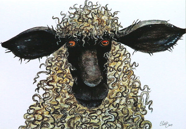 Sheep greeting card by Clare Tyas