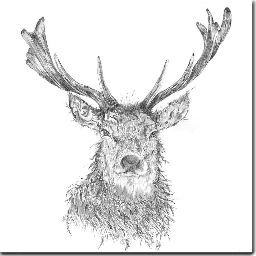 Majestic Stag Greeting Card designed by Sarah Boddy