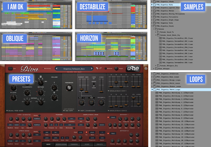 Screen shots of ableton project files, loops, samples