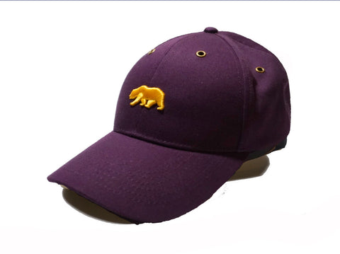 Purple and Gold Cap