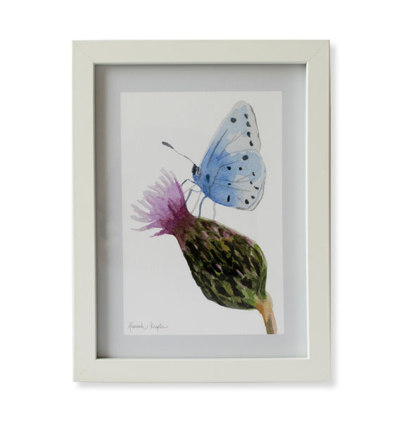 Thistle and Butterfly Print