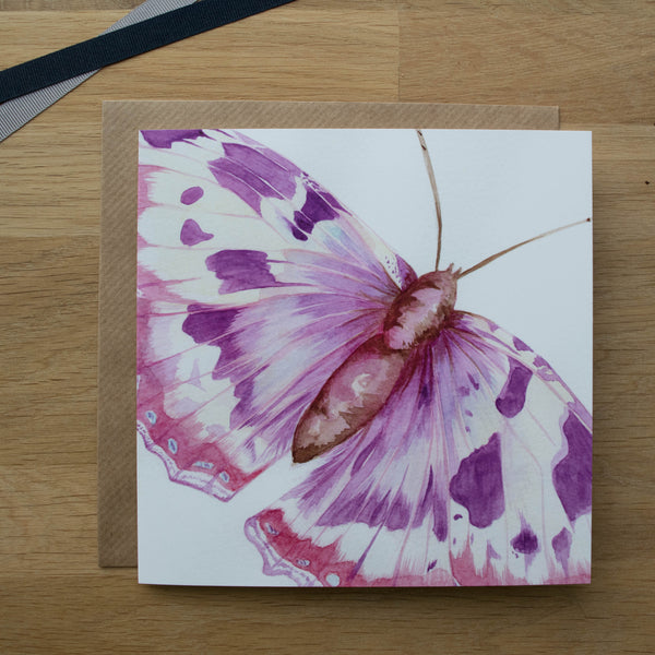 Butterfly and Moth Card Gift Set