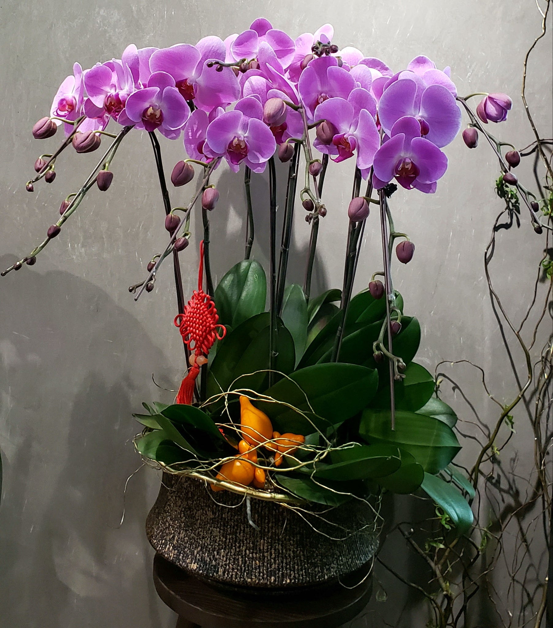 CNY 008 -  8-Stem Orchid Arrangement