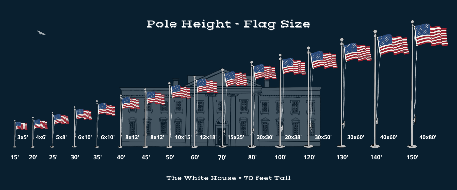 Infographic displaying American flags on poles sizes superimposed over the White House