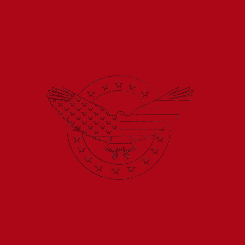 Graphic depicting an eagle with American flag superimposed on red background