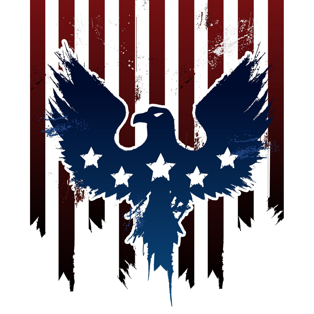 Red white and blue Eagle image