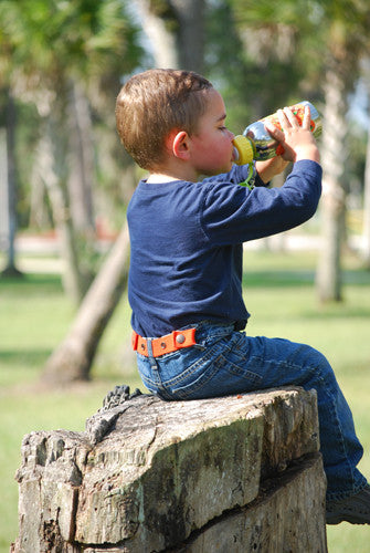 Dapper Snappers Adjustable Toddler Belts