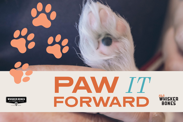 Paw It Forward Donation