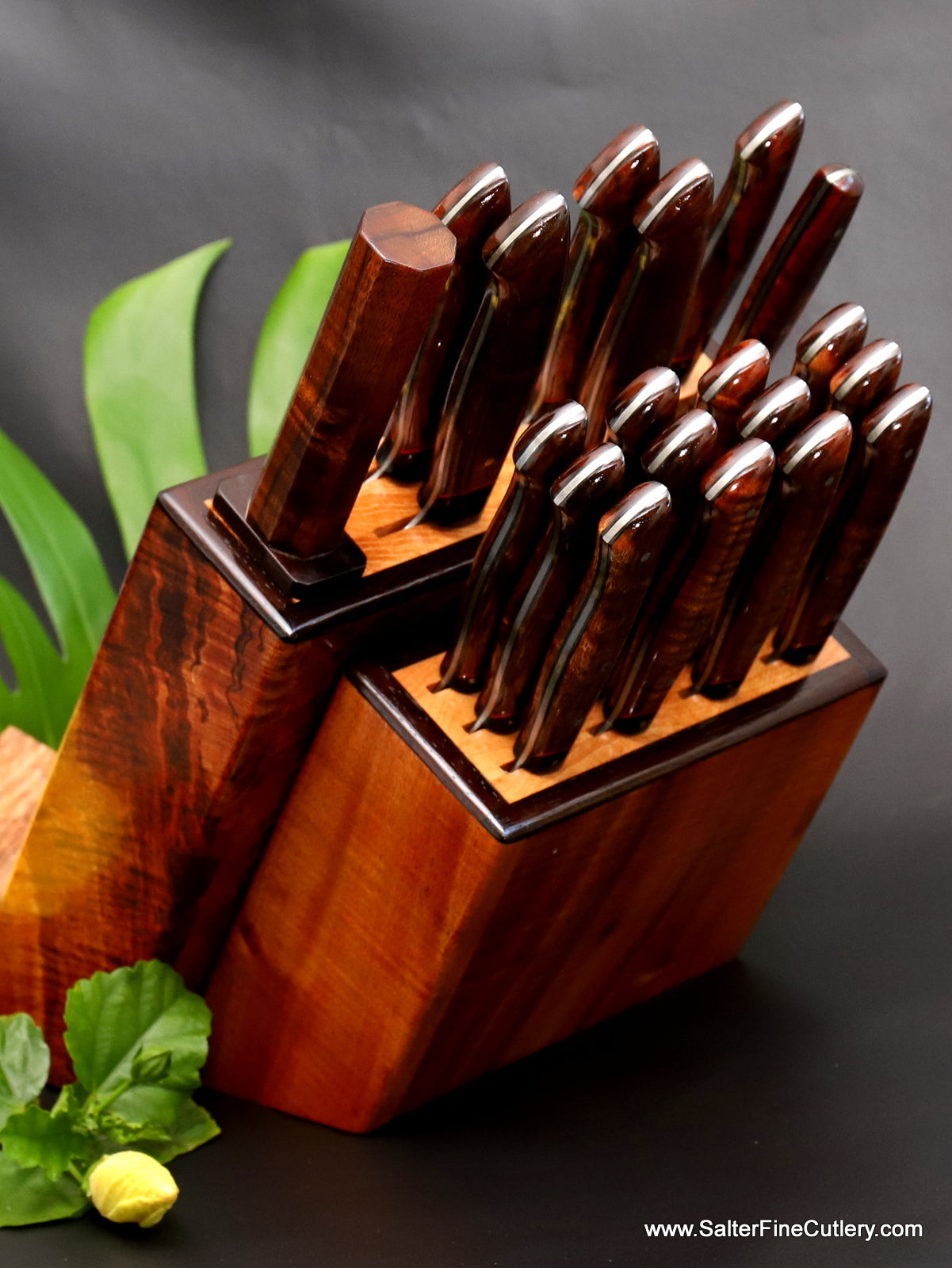 19-piece steak and chef knife set in knife block by Salter Fine Cutlery of Hawaii