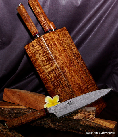 4-piece Charybdis Collectible Chef Knife Set in Matching Knife Block from Salter Fine Cutlery
