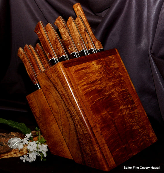 6-piece chef and steak knife set combination in block stand by Salter Fine Cutlery