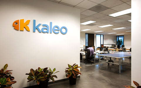 KALEO SOFTWARE