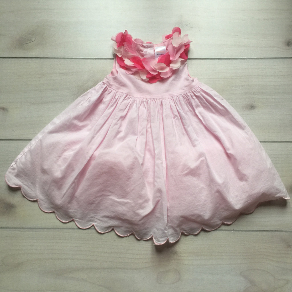 Gymboree Pink Floral Trim Pouf Dress