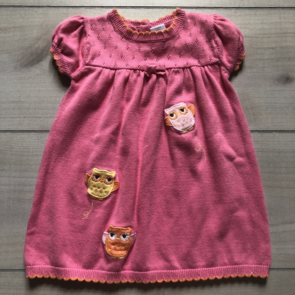 Gymboree Pink Owl Applique Sweater Dress - Sweet Pea & Teddy