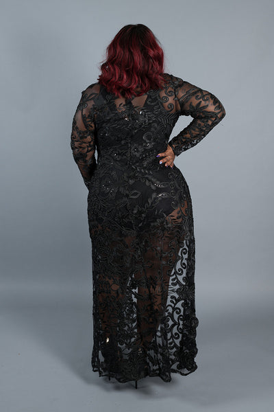 Plus Size Lace Embroidered Mesh Long Sleeve Gown Cover Up Dress