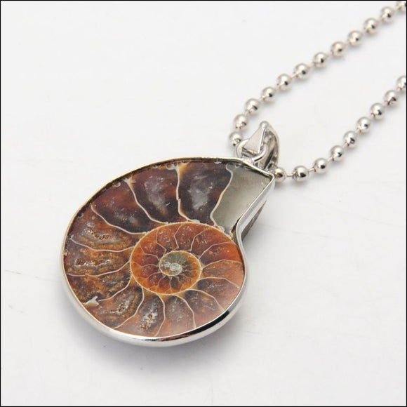Ammonite Fossil Necklace - Adelene Green