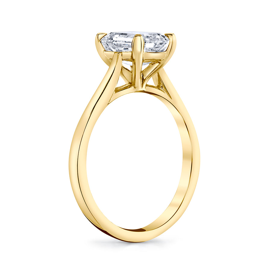 Emerald Cut Diamond Setting
