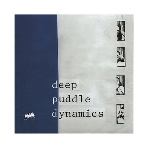 Deep Puddle Dynamics - 'The Taste Of Rain... Why Kneel' [CD]