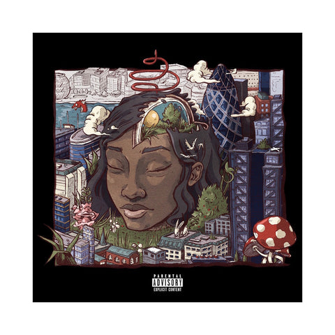 Little Simz - 'Stillness In Wonderland' [CD]