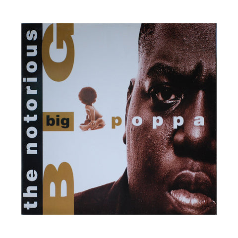 "[""The Notorious B.I.G. - 'Big Poppa/ Warning' [(Black) 12\"" Vinyl Single]""]"