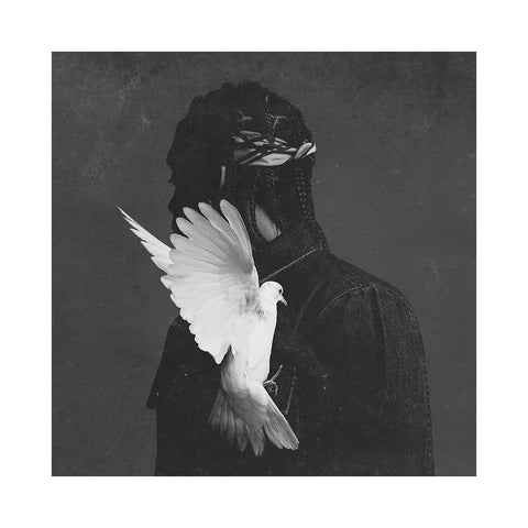 Pusha T - 'King Push - Darkest Before Dawn: The Prelude' [(Black) Vinyl LP]