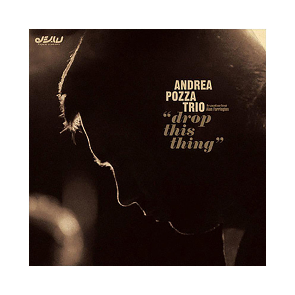 Andrea Pozza Trio - 'Drop This Things' [(Black) Vinyl LP]