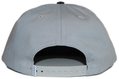 <!--2012062606-->Durkl - 'D Logo' [(Light Gray) Snap Back Hat]