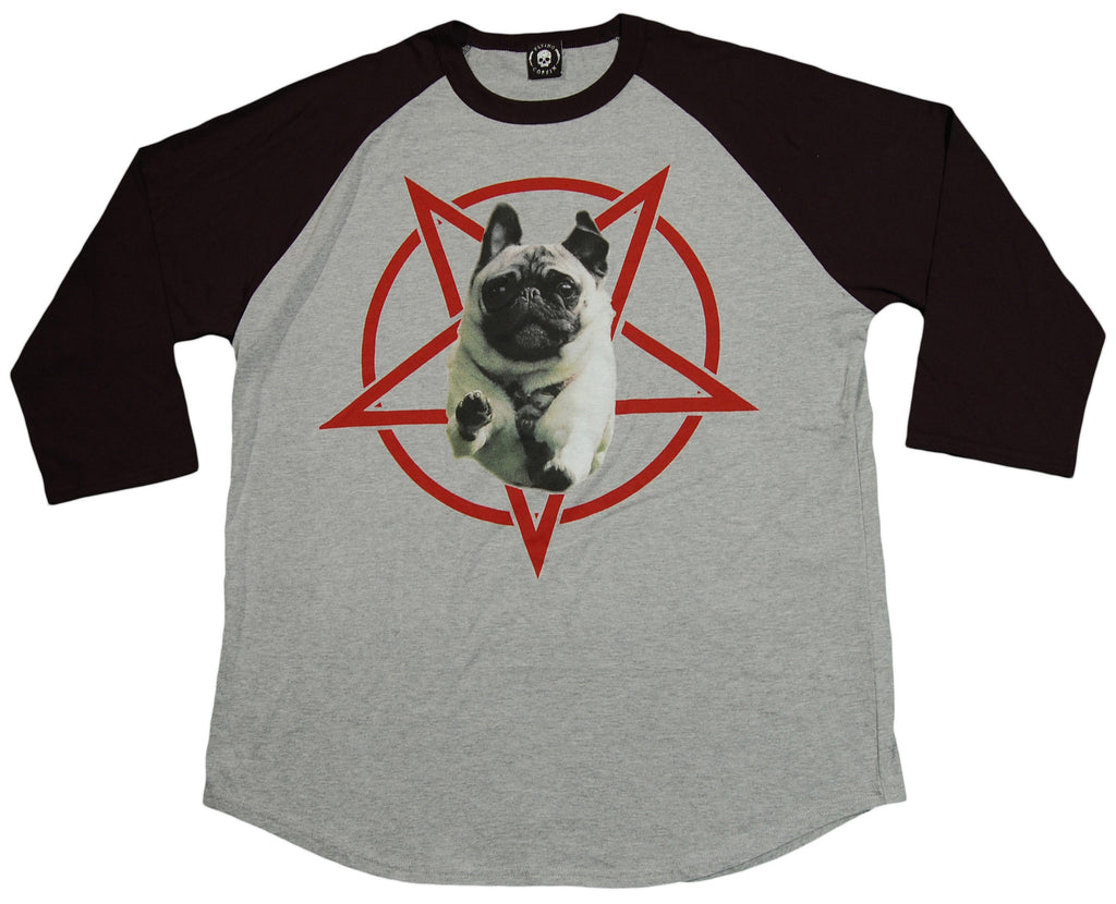 <!--2013042307-->Flying Coffin - 'Hell Hound Redux' [(Gray) T-Shirt]