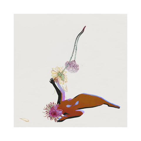 Future Islands - 'The Far Field' [CD]
