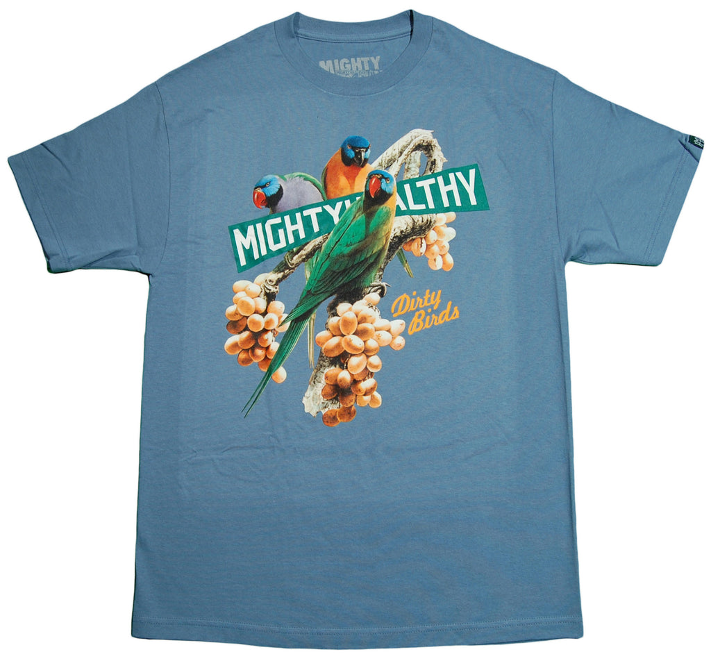 <!--2012121816-->Mighty Healthy - 'Dirty Birds' [(Light Blue) T-Shirt]
