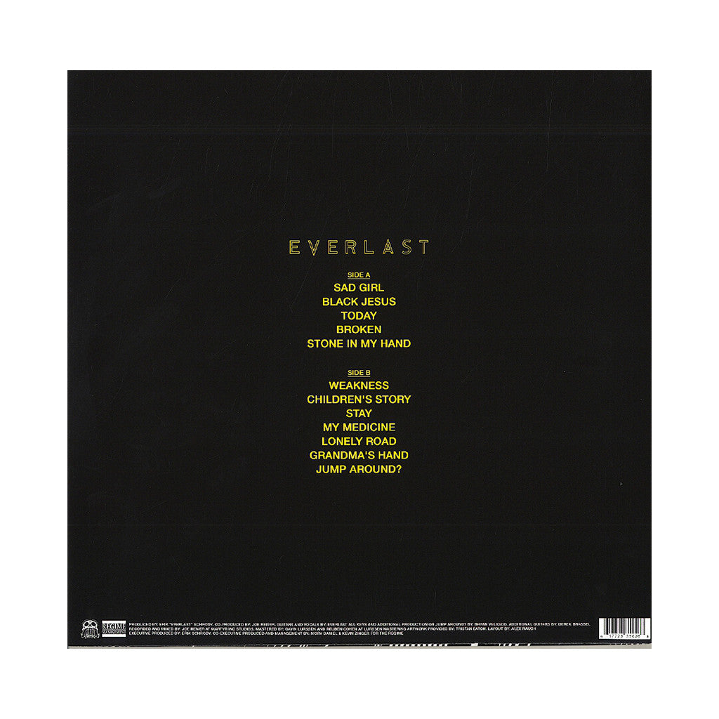 <!--120130827058621-->Everlast - 'The Life Acoustic' [(Black) Vinyl LP]